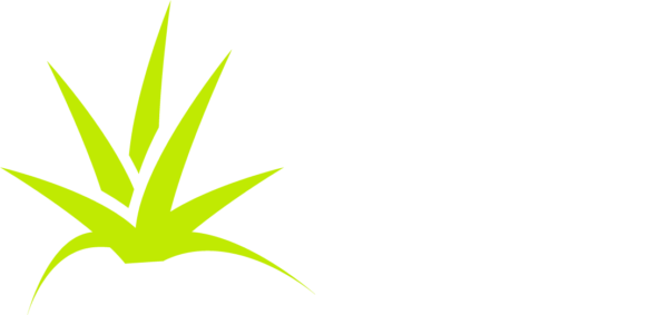 Kelly Engram Landscape Design
